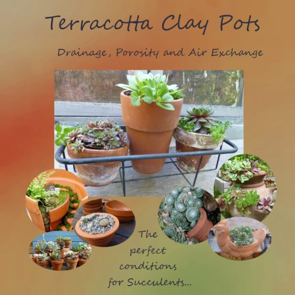If you have a collection of terracotta pots, you're not alone...
