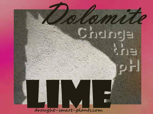 Dolomite Lime - Change the pH