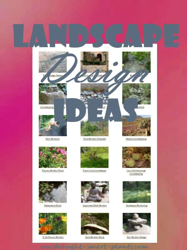 Landscape Design Ideas...