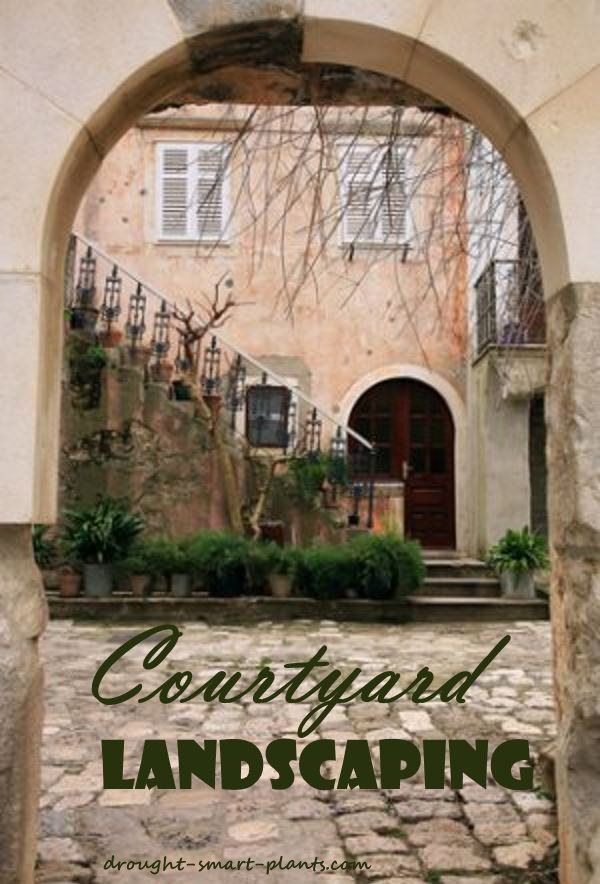 Courtyard landscaping your tiny garden oasis for Garden oases pool entrance