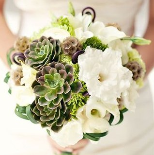 Inspiration image for green and burgundy succulent bouquet