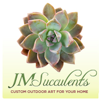 Visit JM Succulents for yourself...