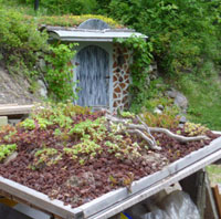 The Japanese Tea House green roof, with Glory Be in the background