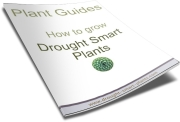 Use the Plant Guides to learn more about your favorite plants and how to grow them...