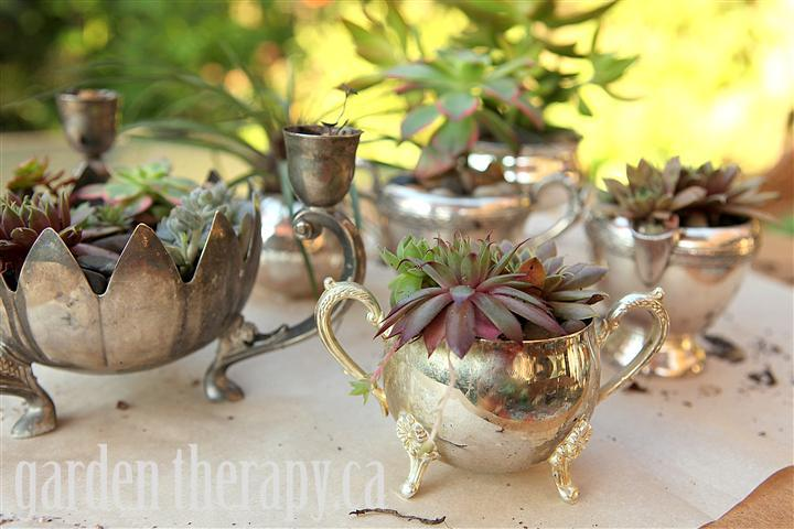 Vintage Silver Planters from Garden Therapy