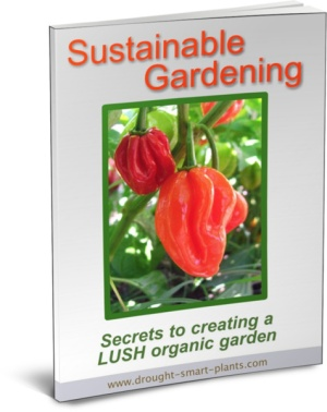 Sustainable Gardening E-Book