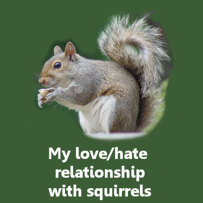 The Gardening Cook's love hate relationship with squirrels...