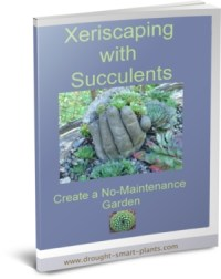 Buy the Xeriscaping with Succulents E-Book for more tips and tricks...