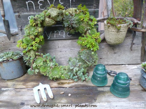 Blue in the garden; antique glass insulators, a blue theme panty hose wreath...
