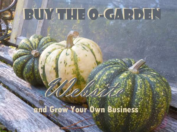 Click here to find out more about O-Garden Website
