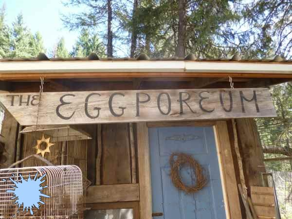 The Eggporeum chicken pen