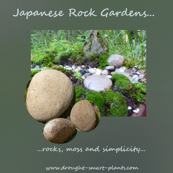 Japanese Rock Garden Pictures See The Slideshow Here
