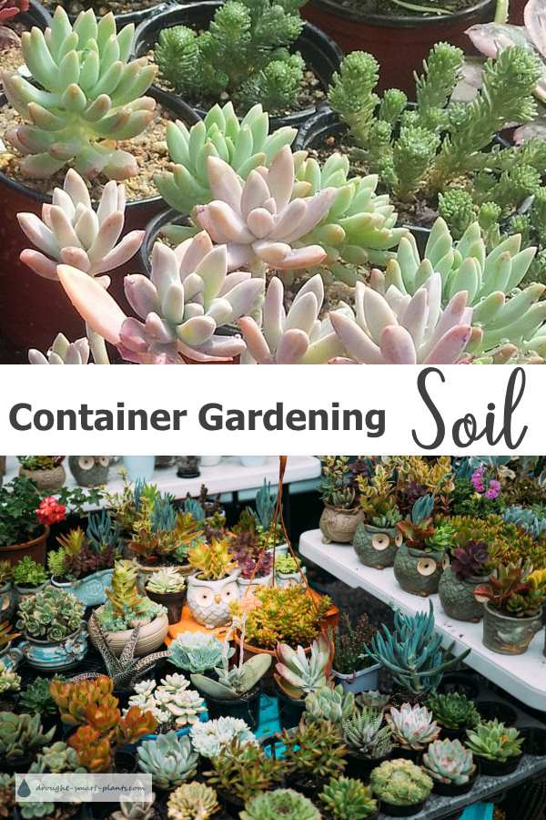 Container Gardening Soil