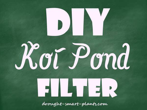 Diy koi pond filter cheap and quick way to clean the for Koi pond filter diy