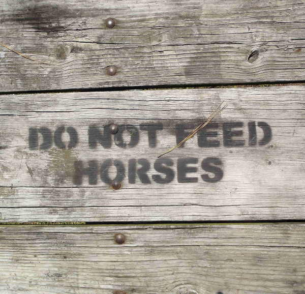 Stenciled Do Not Feed The Horses Sign