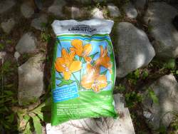 Find dolomite lime in garden shops and hardware stores