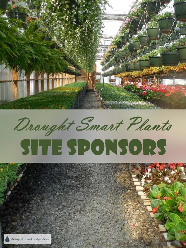 Drought Smart Plants Site Sponsors