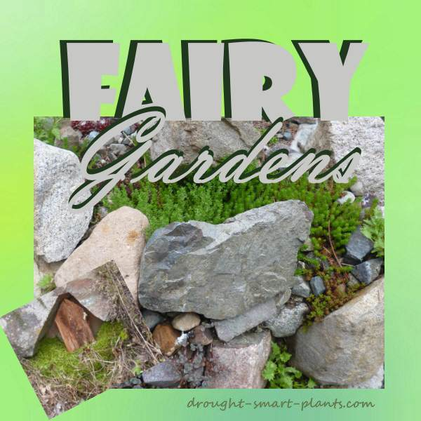 Build a Fairy Garden with a loved one...