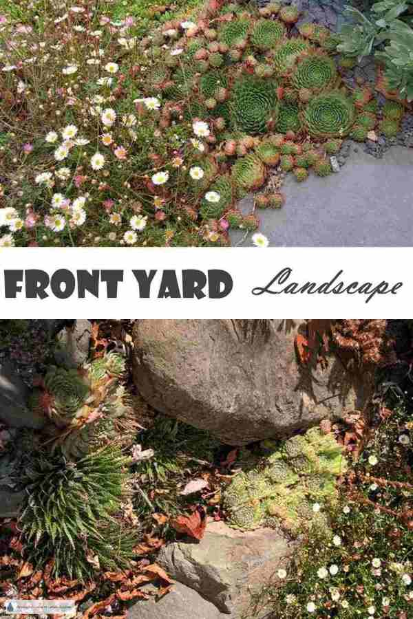 Front Yard Landscape - make a good first impression - curb appeal