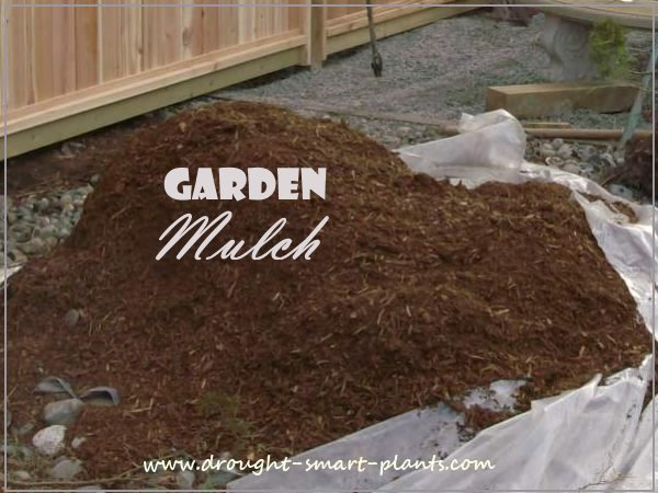 Garden Mulch the best mulching materials how to use them