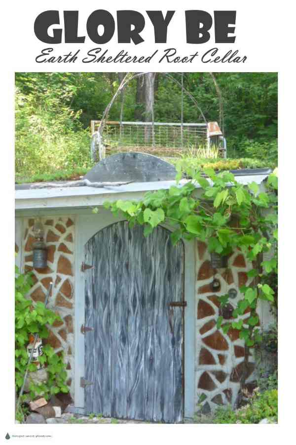 Glory Be the root cellar  sc 1 st  Drought Smart Plants & Glory Be - the earth sheltered green roofed cordwood root cellar