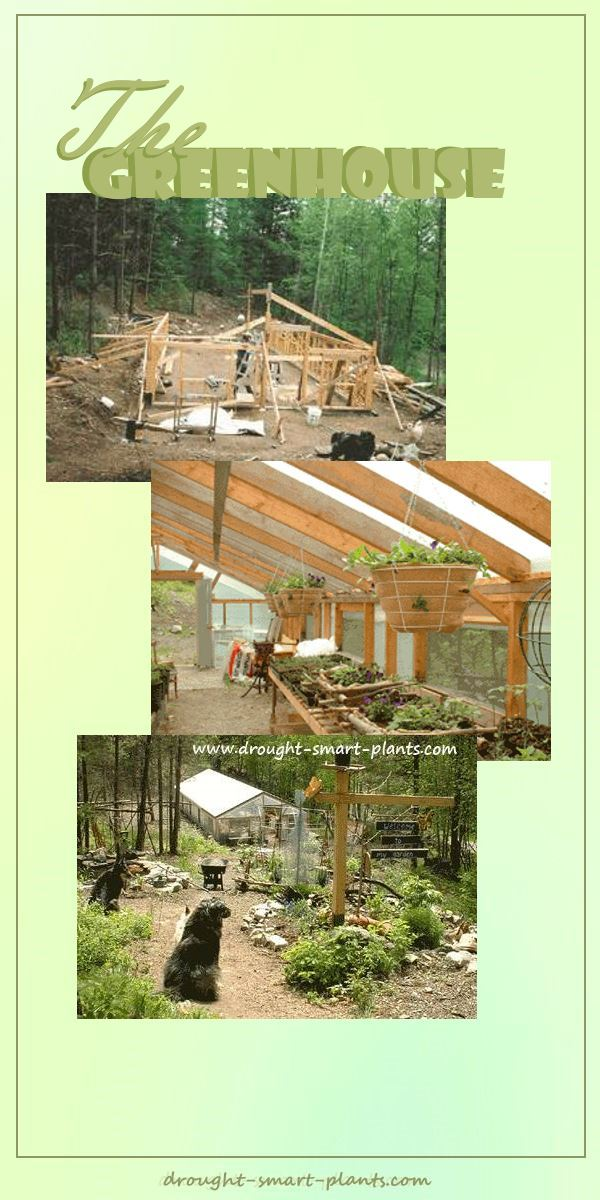 The Greenhouse; 12 short years