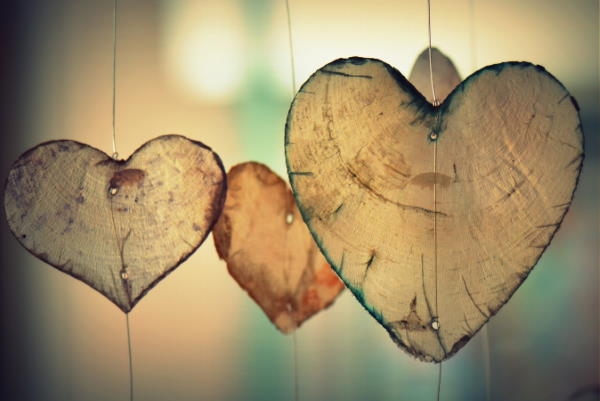 Thin slices of heart shaped tree trunks