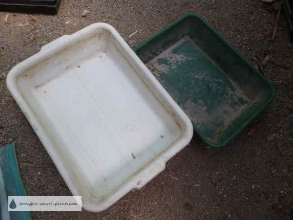Bussing Tub and Cat Litter Box