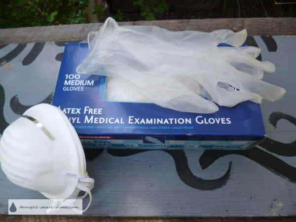 Examination Gloves and Dust Mask