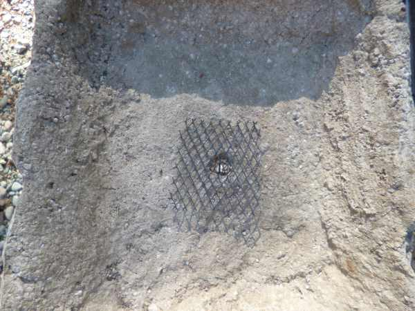 Plastic mesh to keep soil from falling through the drainage hole