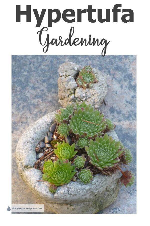 There is no denying it; Hypertufa Gardening is a lot of fun, both to make the pots and containers, and to display them...