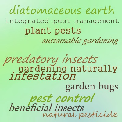 Diatomaceous Earth is a natural pest control; use with caution!