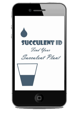 Want to identify your succulents?  Get the App!