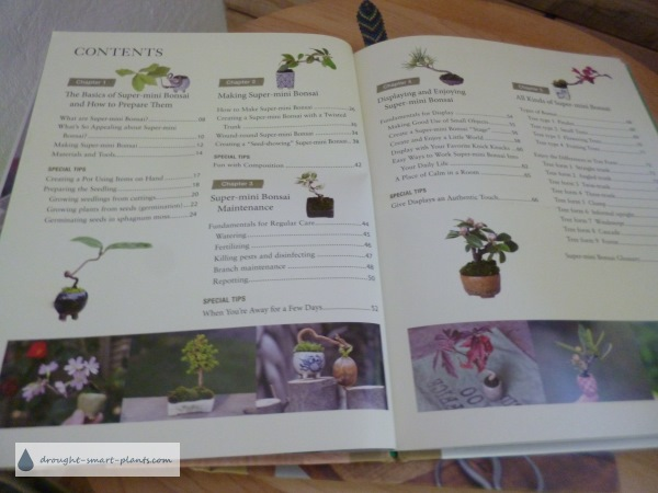 Table of contents in the Miniature Bonsai book