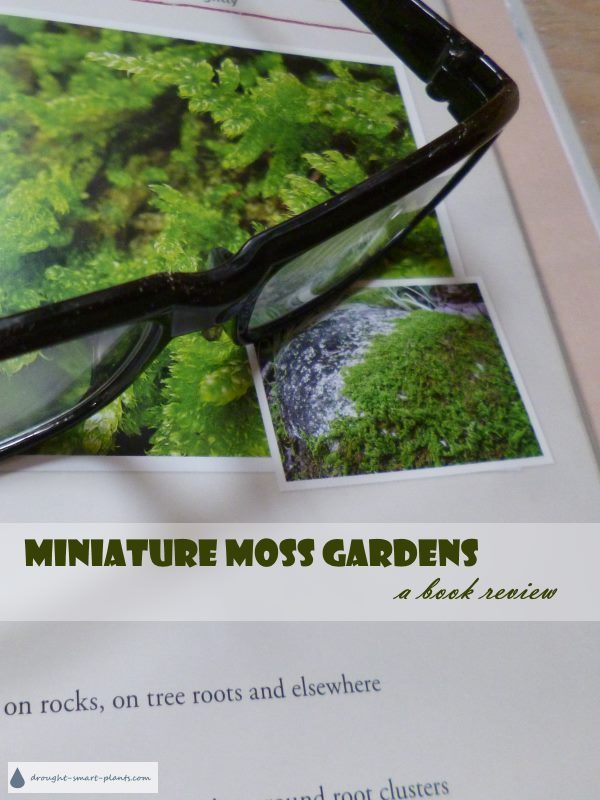 Miniature Moss Gardens - Create Your Own Japanese Container Gardens, a book review