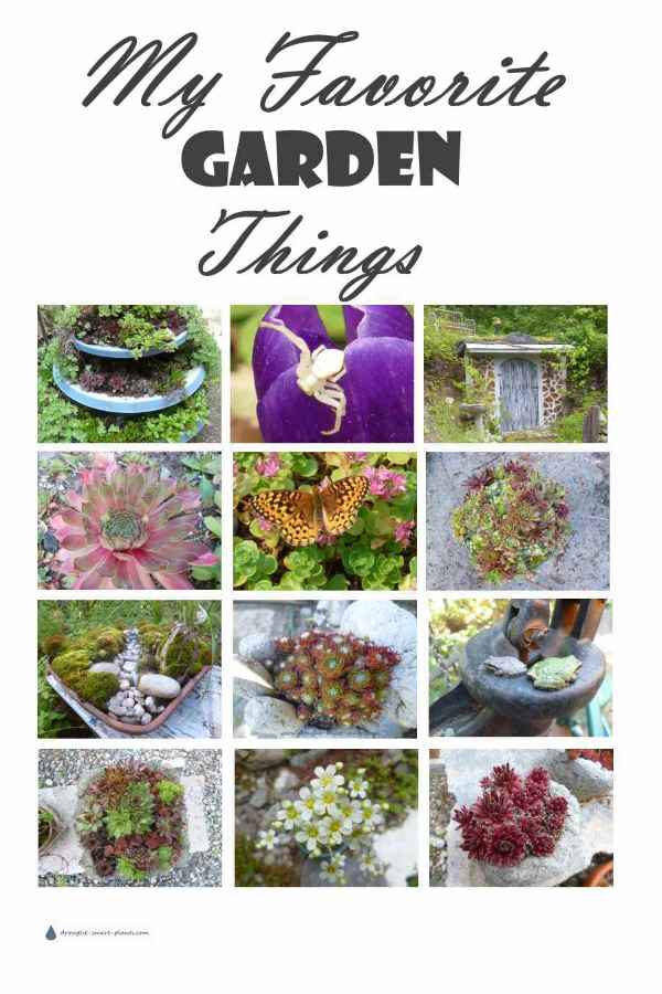 My Favorite Garden Things