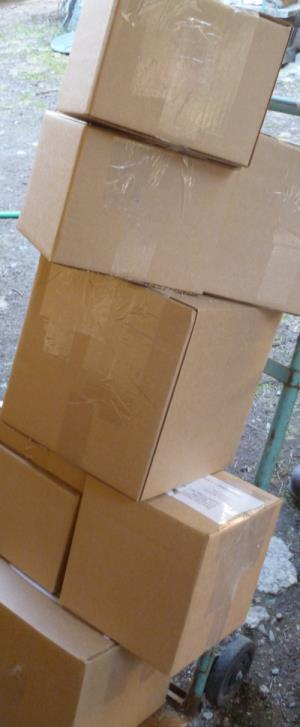 Packaged safely in cardboard boxes, plants are ready to go to their new homes...