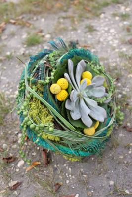 tiny feather basket with Echeveria