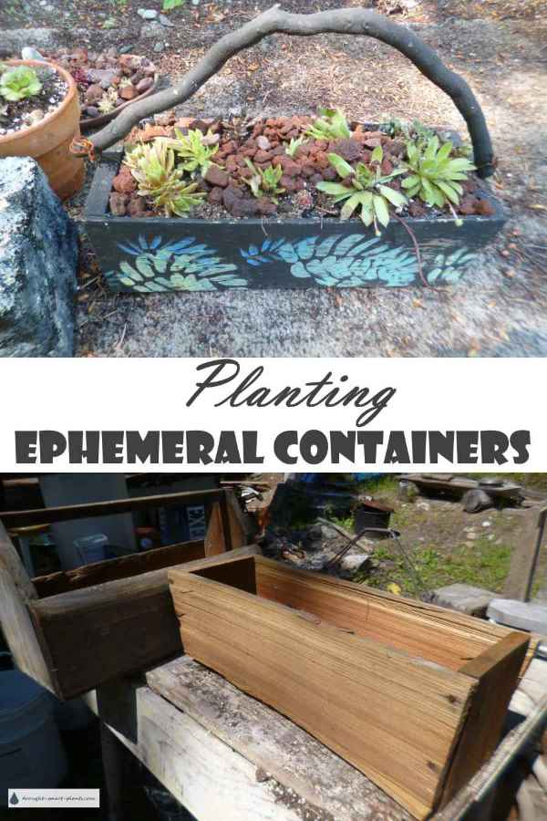 Planting Ephemeral Containers