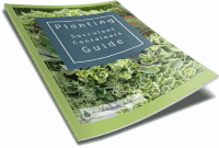 Get the FREE Planting Succulent Containers Guide