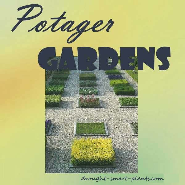 Geometric shaped potager garden