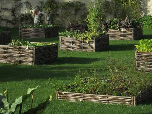 Willow Hurdles contain the soil