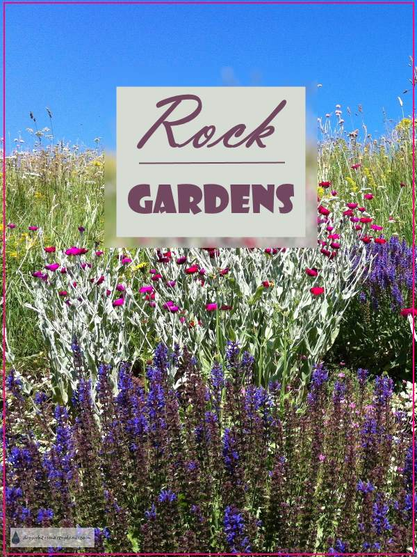 Rock Gardens crevice gardens cliffs and screes – Rock Garden Plants