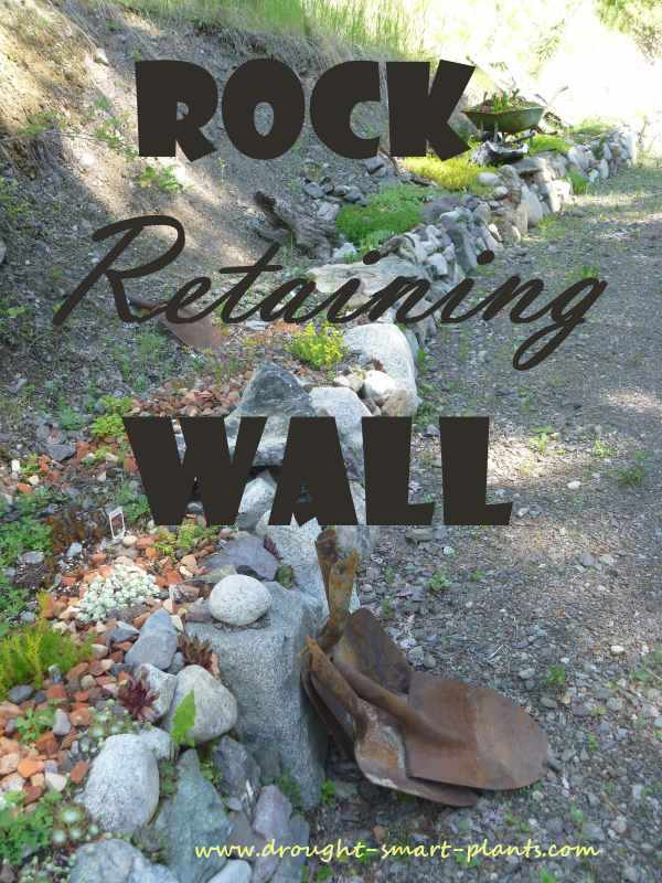 Rock Retaining Wall Nooks Crannies Amp Niches For Hardy