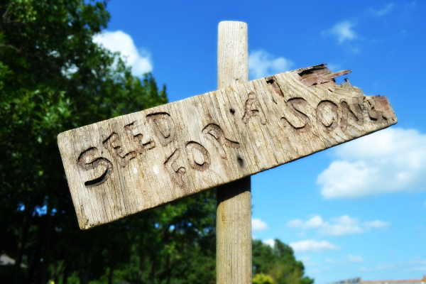 Seed for a Song Sign