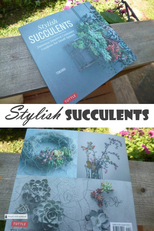 Stylish Succulents - a book review