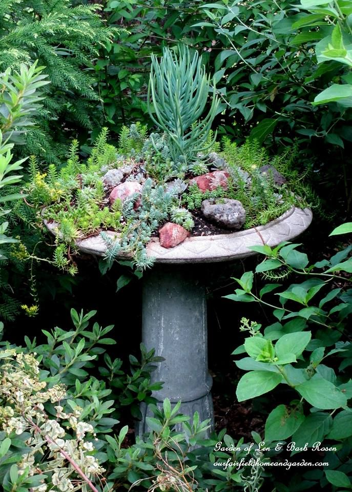 21 Charming Succulent Planters - spring inspiration