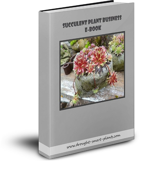 Succulent Plant Business E-Book