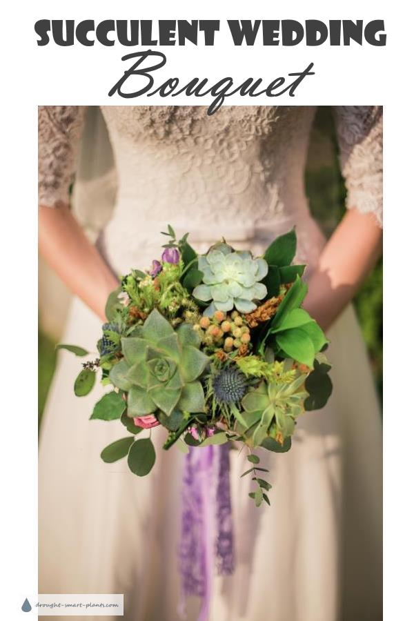 Succulent Wedding Flowers
