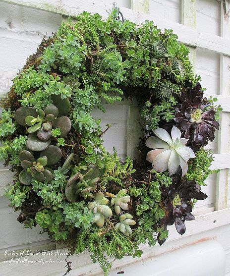 See the DIY on making this succulent wreath on Our Fairfield Home and Garden...